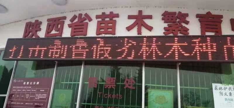苗木中心开展涉林侵权集中宣传月活动